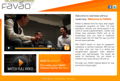 Image of Favao Web Site
